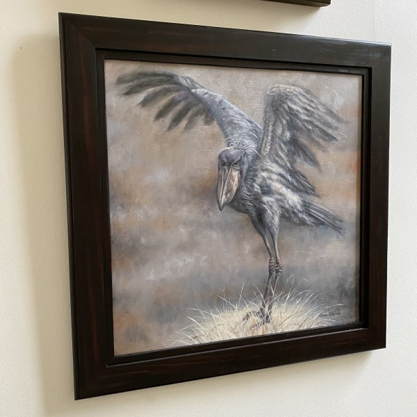 Shoebill Frame (600 x 600)